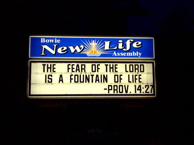 pardon the pun...